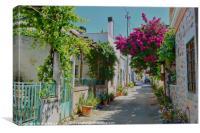 Cretan Street, Canvas Print