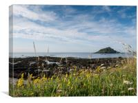 Mewstone Island from Wembury Point, Canvas Print