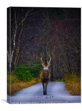 The Marching Stag, Canvas Print