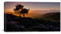 Quantock Hills, Canvas Print