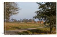 The Ruins, Bradgate Park, Canvas Print
