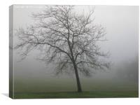 Winter Tree in Winter Fog, Canvas Print