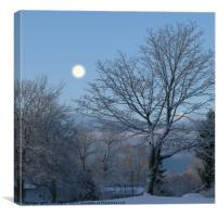 Moonlight on the first snowfall, Canvas Print