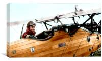 A WW1 Roland aircraft of the German air force., Canvas Print