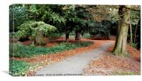 Autumnal walk in the park, Canvas Print