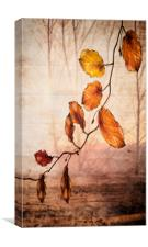 Autumn melody , Canvas Print