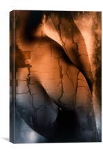 female naked curves , Canvas Print