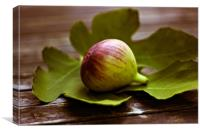 Honeyed figs , Canvas Print