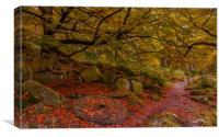 Padley Gorge Millstone, Canvas Print