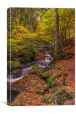 Autumn in Wyming Brook 2, Canvas Print