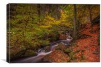Autumn in Wyming Brook , Canvas Print