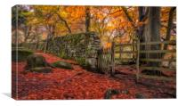 Autumn Gold in Padley Gorge, Canvas Print
