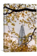 Looking for the Shard, Canvas Print