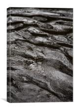 Water detail., Canvas Print