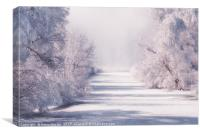 Icy Cold River, Canvas Print