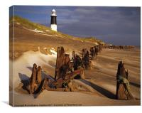 Winter at Spurn Point