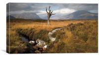On Rannoch Moor, Canvas Print