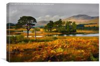 Grey skies over Loch Tulla, Canvas Print