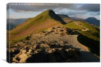 Catbells at dawn                            , Canvas Print