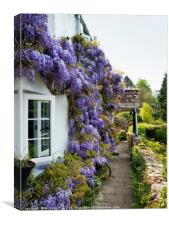 Wisteria Welcome, Canvas Print