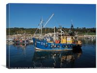 Sea Seeker At Lyme Regis harbour, Canvas Print