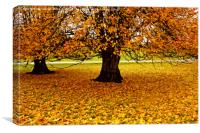 The Tree In Autumn, Canvas Print