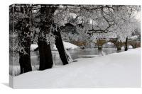 Trees by the bridge , Canvas Print