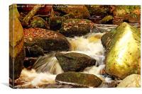 Water Flow On Mossy Rocks, Canvas Print