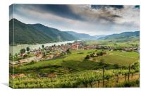 View to Wachau valley with Danube river and vineya, Canvas Print