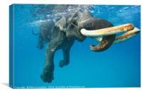 Underwater mystery, Canvas Print