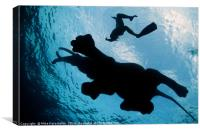 Swimmers, Canvas Print