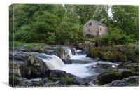 Cenarth Falls, Canvas Print