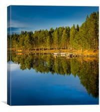 the mirror of the lake, Canvas Print