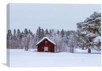 Snow in Sweden, Canvas Print