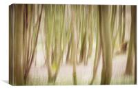 Woodlands Abstract, Canvas Print