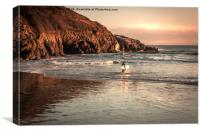 Surfer at Caswell, Swansea, Canvas Print