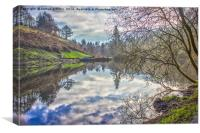 Penllergaer woods, swansea, lake, Canvas Print