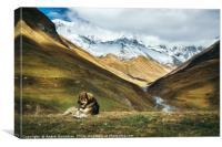 Dog against Enguri river and Shkhara mountain. Geo, Canvas Print