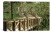 Wooden bridge, Canvas Print