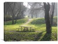 "Old park ""Casa de Campo"", Canvas Print"