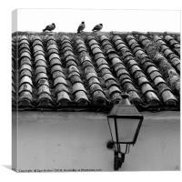 Tile roof, Canvas Print