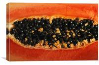 Black Seed, Canvas Print