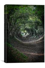 Tunnel of Trees, Canvas Print