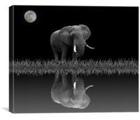 Elephant By Moonlight, Canvas Print