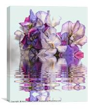 Floral reflections, Canvas Print