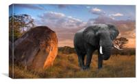 Serengeti Sundown, Canvas Print