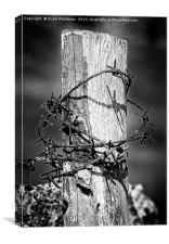 Wood and wire, Canvas Print