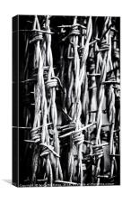 Barbed Wire, Canvas Print