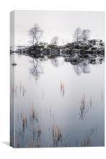 Rannoch Moor Winter, Canvas Print