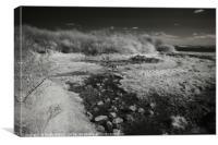 Winding river, Canvas Print
